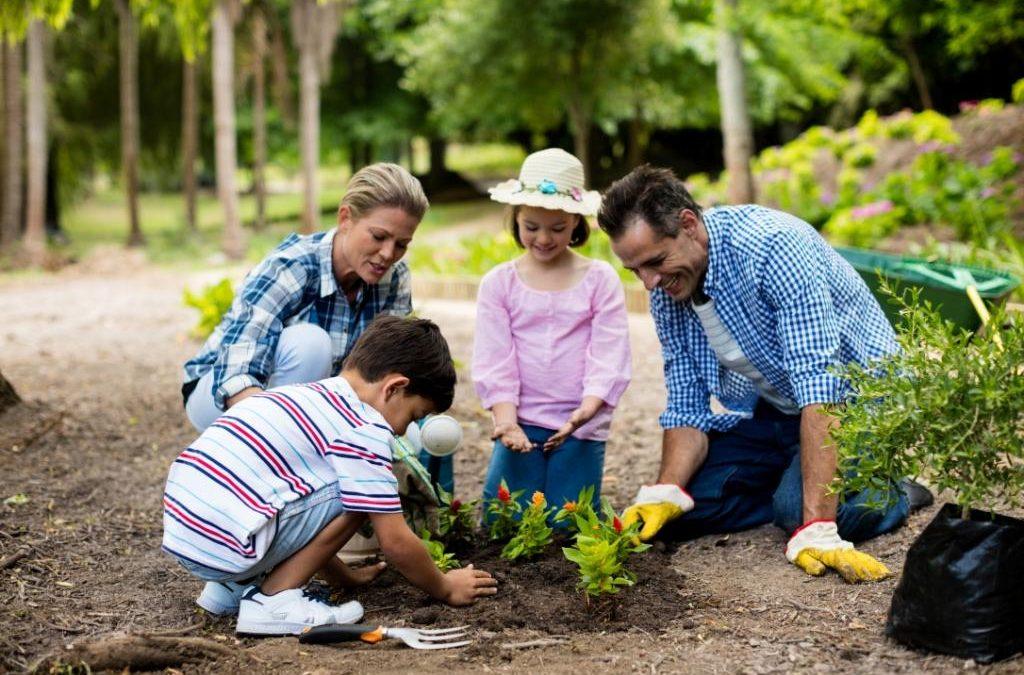 3 Tips for Safe Gardening